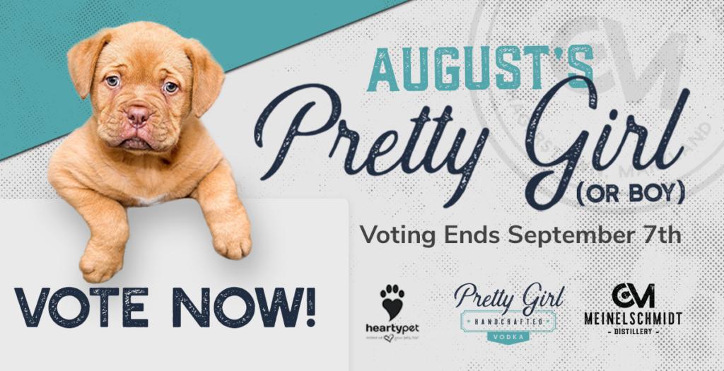 Pretty Girl Contest: August